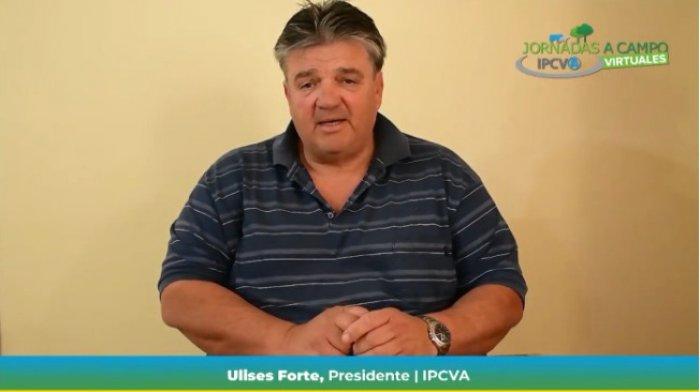 """El IPCVA realizó su primera jornada ganadera virtual:""""Op..."""