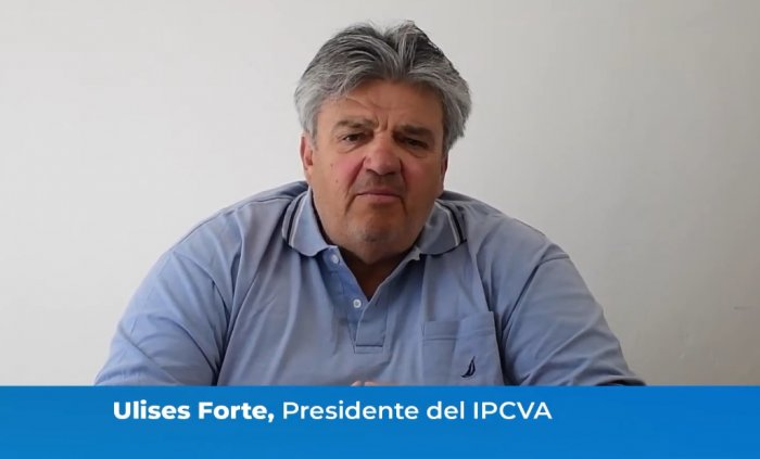 Reviva en video el seminario ganadero virtual del IPCVA en Patagones