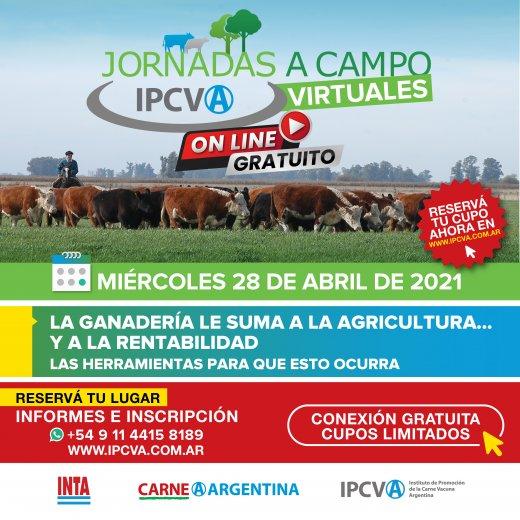 28 de abril: nueva jornada ganadera virtual delIPCVA en Cor...