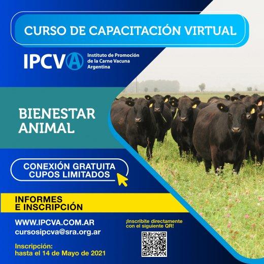 Bienestar animal, un nuevo curso  de capacitación virtual del ...